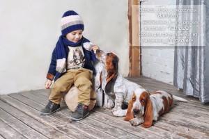 Одежда, обувь и аксессуары Barilotto эксклюзивно в сети детских магазинов Катюша. Собаки для джентельменов из питомника Меркони_0094