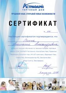 Сертификат Питомник Меркони Бассет Хаунд Ростов на Дону