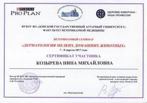 MERKONI BASSET RUSSIA Kozyreva 02 2017