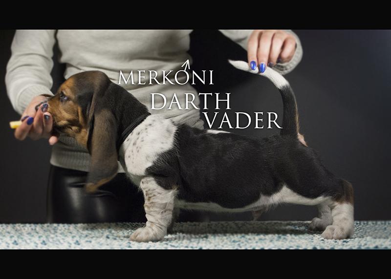 Merkoni Darth Vader 1