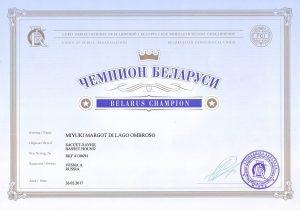 Champion of Belarus