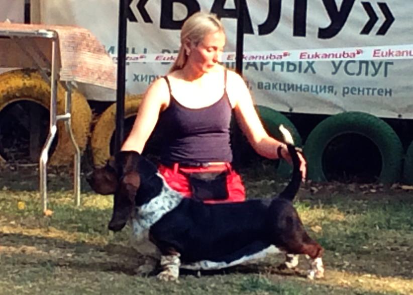 Miyuki Margot  Di Lago Ombroso-Breeder — Lago Ombroso-Owner  Anastasiya Vesna(Merkoni kennel Basset Hound) -03