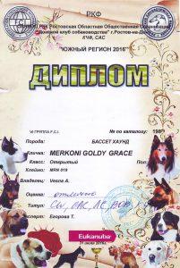 Merkoni Golgy Grace 02